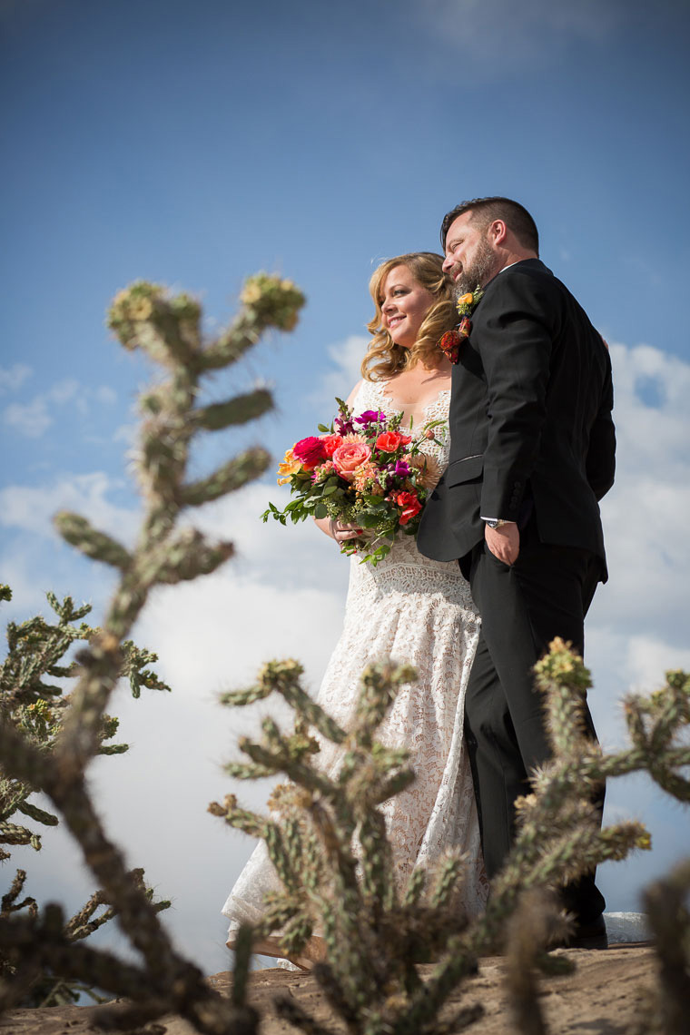 La Mesita Ranch wedding couple framed with the cactus and blue sky
